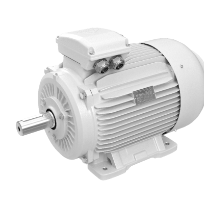 elektromotory 55kw 1LC280M-6