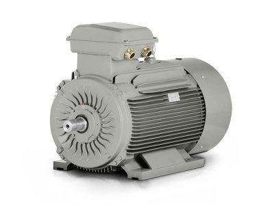 Elektromotor 200 kW 3LC355M2-6, 992 ot.min.-1