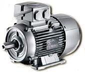elektro motor Siemens 1LA7106