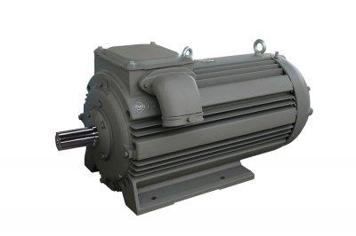 elektro motor P400L10 160kW 10 pólov