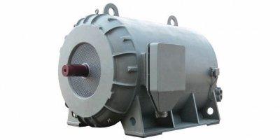 1YG motor