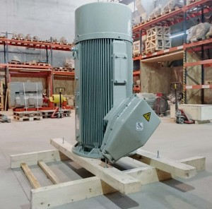 Electric motor 250kW